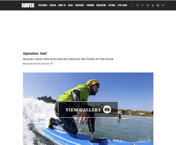 Surfer article screenshot